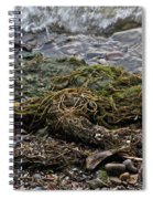 Sea Weed Spiral Notebook