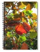 Seagrape Leaves Spiral Notebook