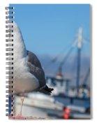 Seagull 3 Spiral Notebook