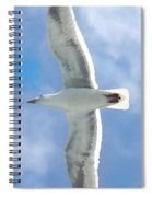 Seagull 3 Spiral Notebook