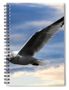 Seagull And Clock Tower Spiral Notebook