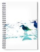 Seagull Art - On The Shore - By Sharon Cummings Spiral Notebook