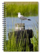 Seagull At Weeks Landing Spiral Notebook