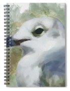 Seagull Closeup Spiral Notebook