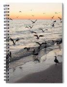 Seagulls Feasting Spiral Notebook