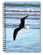 Seagull Flight Spiral Notebook