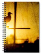Seagull In Harbor Sunset Spiral Notebook