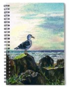 Seagull Lookout Spiral Notebook