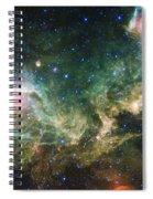 Seagull Nebula Spiral Notebook