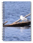 Seagull On Driftwood Spiral Notebook