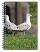 Seagull Opposites Spiral Notebook