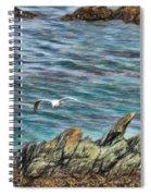 Seagull Over Rocks Spiral Notebook