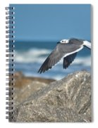 Seagull Parallel Spiral Notebook