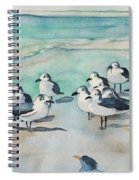 Seagull Party Spiral Notebook