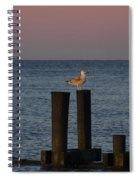 Seagull Seascape Spiral Notebook