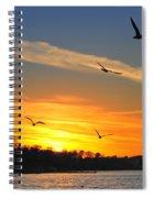 Seagull Serenity Spiral Notebook