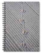 Seagull Tracks Spiral Notebook