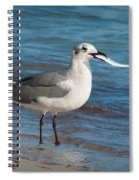 Seagull With Fish 1 Spiral Notebook