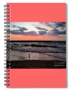 Seagull With Sunset Spiral Notebook