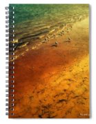 Seagulls At Sunset Spiral Notebook