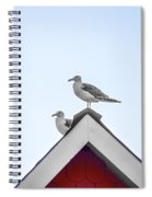 Seagulls Perched On The Rooftop Spiral Notebook