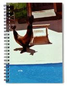 Seal And Ball Spiral Notebook