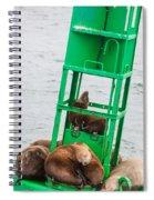 Seal Hammock Spiral Notebook