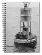 Seal Nap Time Black And White Spiral Notebook