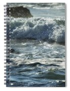 Seal Surfing Waves Spiral Notebook