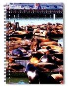 Seal Wharf Spiral Notebook