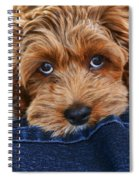 Seamus Spiral Notebook