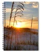 Seaoats Sunrise Spiral Notebook