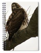 Searching Spiral Notebook