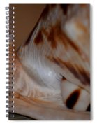 Seashell Abstract 1 Spiral Notebook