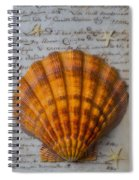Seashell And Words Spiral Notebook