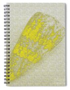 Seashell Spiral Notebook