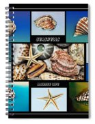 Seashell Collection 2 Spiral Notebook