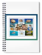Seashell Collection 4 - Collage Spiral Notebook