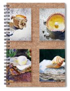 Seashell Collection I Spiral Notebook