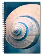 Seashell In Pastel Spiral Notebook