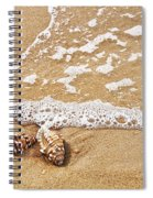 Seashells And Lace Spiral Notebook