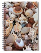 Seashells - Vertical Spiral Notebook