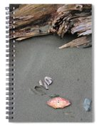 Seashells On The Seashore II Spiral Notebook