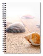 Seashells On Wood Dock Spiral Notebook