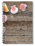 Seashells On Wood Spiral Notebook