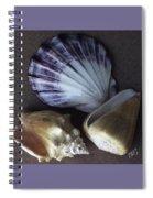 Seashells Spectacular No 30 Spiral Notebook