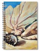 Seashore Shell Still Life Spiral Notebook