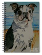 Seaside Harold Spiral Notebook