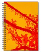Season Of Colours Spiral Notebook