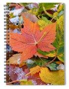 Seasonal Mix Spiral Notebook